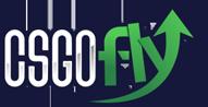 CSGOFly logo